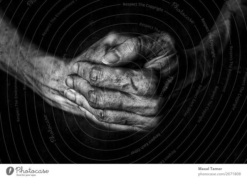 Die Hände der Frau betend schön Haut Mensch Erwachsene Arme Hand Finger alt dunkel natürlich stark schwarz Kraft Religion & Glaube Aktion Hintergrund Kaukasier