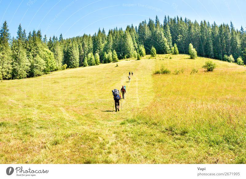 Frau Mensch Ferien & Urlaub & Reisen Natur Jugendliche Mann Junge Frau Sommer Pflanze blau grün Junger Mann weiß Landschaft Sonne Baum