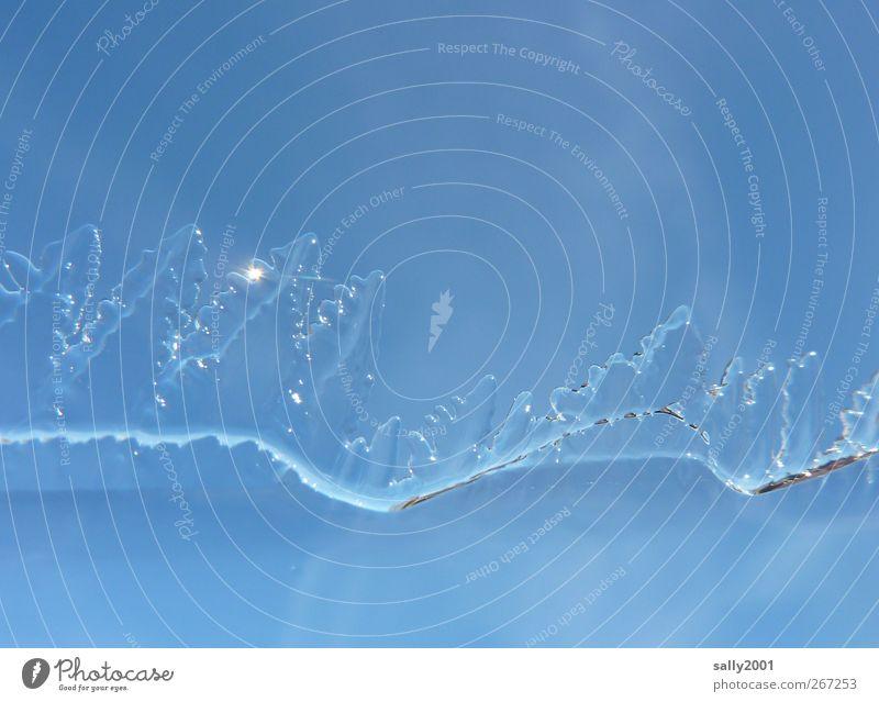 Ice Age Himmel blau Wasser Baum Winter kalt Eis glänzend ästhetisch Frost Coolness Spitze gefroren frieren Eiskristall zerbrechlich