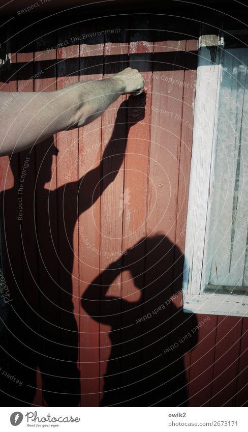 Handwerk Frau Erwachsene Mann Arme 2 Mensch Haus Hütte Mauer Wand Fassade Fenster Holz Arbeit & Erwerbstätigkeit Zusammensein rot Anstrich streichen Erneuerung