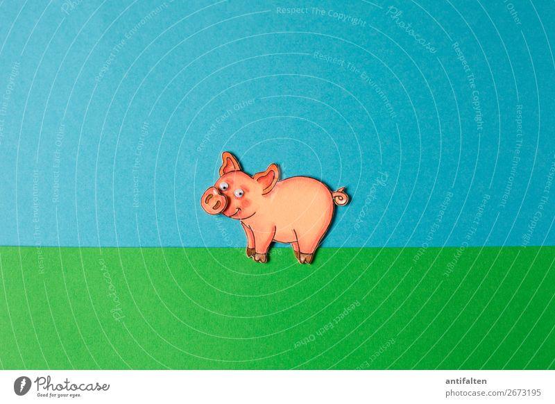 Year of the pig Freizeit & Hobby Basteln Veranstaltung Feste & Feiern Silvester u. Neujahr Geburtstag Tier Haustier Nutztier Tiergesicht Streichelzoo Schwein 1