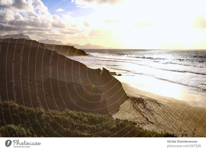 Westcoast Fuerte Ferien & Urlaub & Reisen Tourismus Ausflug Abenteuer Natur Landschaft Sand Himmel Wolken Frühling Schönes Wetter Baum Sträucher Wellen Küste