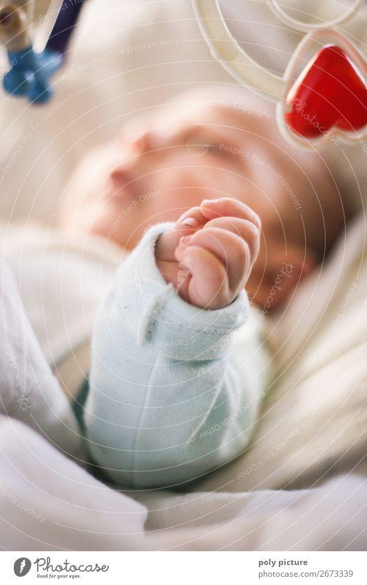 Spielendes Baby Lifestyle harmonisch Wohlgefühl Zufriedenheit Sinnesorgane Erholung Kind Familie & Verwandtschaft Kindheit Jugendliche Körper Hand 0-12 Monate