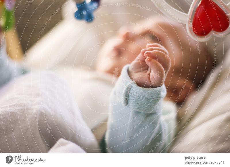 Baby spielt mit Rasseln Freizeit & Hobby Spielen Kind Kleinkind Familie & Verwandtschaft Kindheit Leben 0-12 Monate Stimmung Freude Glück Fröhlichkeit