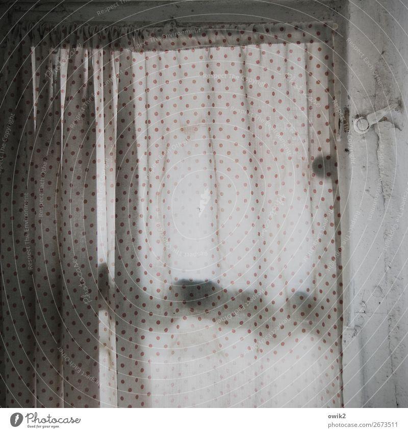 Punktuell abgeschabt Fenster Toilettenfenster Vorhang Verschluss Stoff Punktmuster Gardine Sichtschutz Diskretion Falte Faltenwurf hängen geduldig ruhig