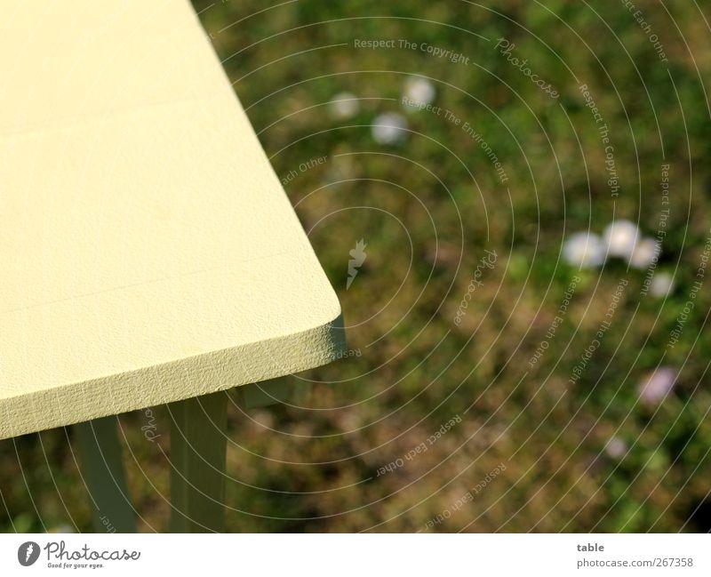 GartenTischEcke Umwelt Natur Frühling Sommer Schönes Wetter Wiese Holz stehen Wachstum eckig neu Sauberkeit gelb grün Frühlingsgefühle Vorfreude Warmherzigkeit