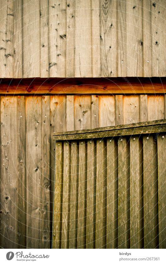 Bretterbude braun Tür Fassade natürlich authentisch einfach Hütte Holzbrett Anschnitt roh Eingangstor