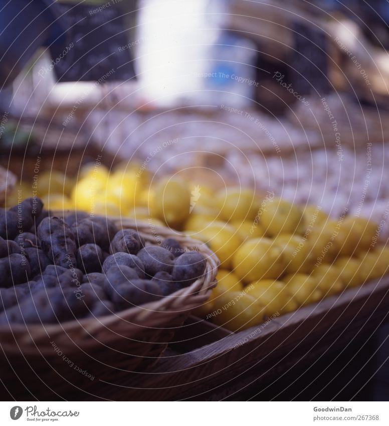 Geschmäcker Frankreichs. Ernährung Lebensmittel frisch gut viele lecker Zitrone Billig Kartoffeln Marktstand