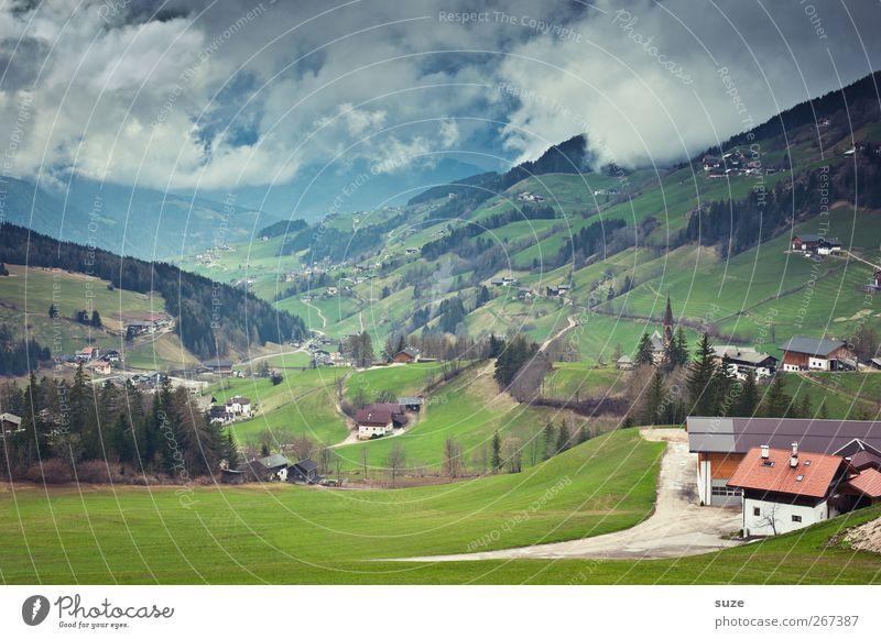 Überblickung Ferne Sommer Berge u. Gebirge Haus Umwelt Natur Landschaft Urelemente Himmel Wolken Klima Schönes Wetter Baum Wiese Alpen Dorf außergewöhnlich grün