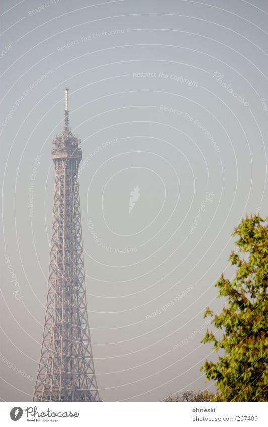 Turm Baum Paris Sehenswürdigkeit Wahrzeichen Tour d'Eiffel blau Farbfoto Gedeckte Farben Außenaufnahme Menschenleer Textfreiraum rechts Textfreiraum oben Morgen