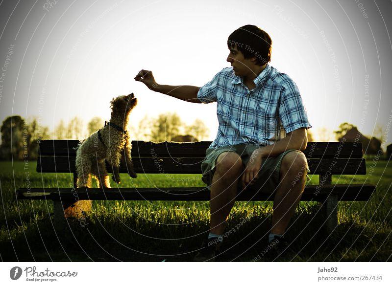 Tagträumer Mensch maskulin 18-30 Jahre Jugendliche Erwachsene Umwelt Natur Tier Haustier Hund atmen füttern warten Gefühle Stimmung Freude Glück Fröhlichkeit