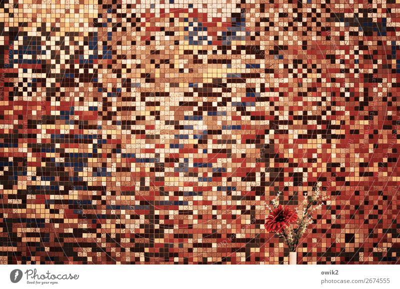 Suchbild Blume Innenarchitektur Wand Kunst Dekoration & Verzierung wild verrückt verstecken Kunstwerk durcheinander Mosaik Speisesaal Mensa Bilderrätsel