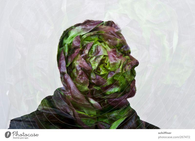 Salatkopf Mensch Mann grün Erwachsene Ernährung Kopf Gesundheit außergewöhnlich maskulin Nase Gesunde Ernährung fantastisch skurril Bioprodukte Salat Salatbeilage