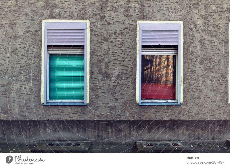 Kiez-zwinkern Stadt Menschenleer Haus Mauer Wand Fassade Fenster Rollladen grün rosa rot weiß hochgezogen runterlassen Reflexion & Spiegelung Kellerfenster