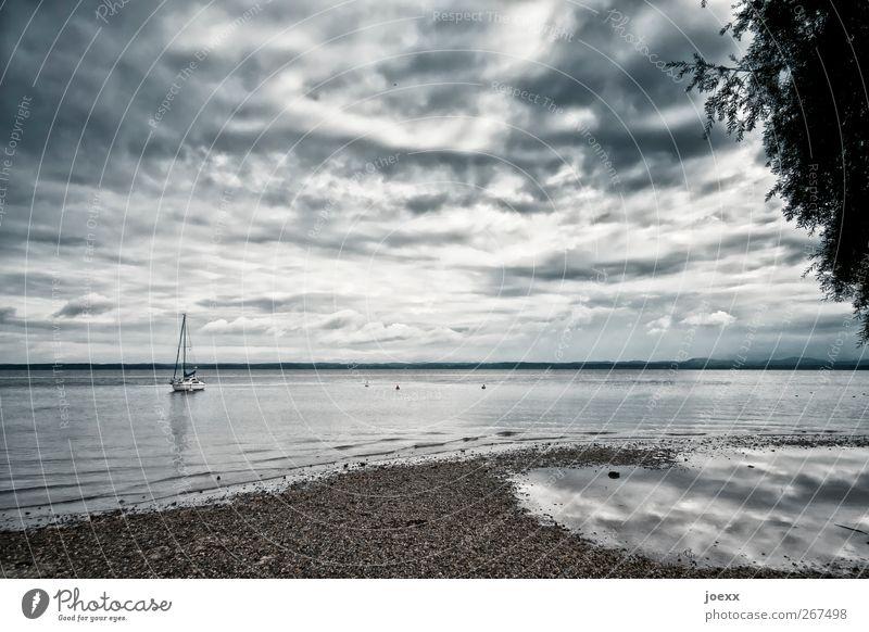 Das Boot Natur Wasser Himmel Wolken Horizont Sommer Herbst schlechtes Wetter Gewitter Seeufer Jacht Segelboot blau grau schwarz weiß ruhig Einsamkeit Idylle