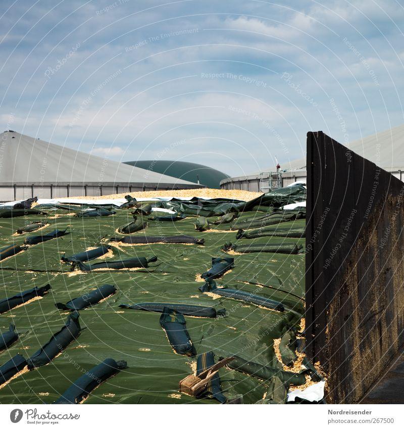 Biomasse blau grün Wolken Wand Mauer Arbeit & Erwerbstätigkeit Energiewirtschaft Erfolg Zukunft Technik & Technologie Bauwerk Landwirtschaft Klimawandel