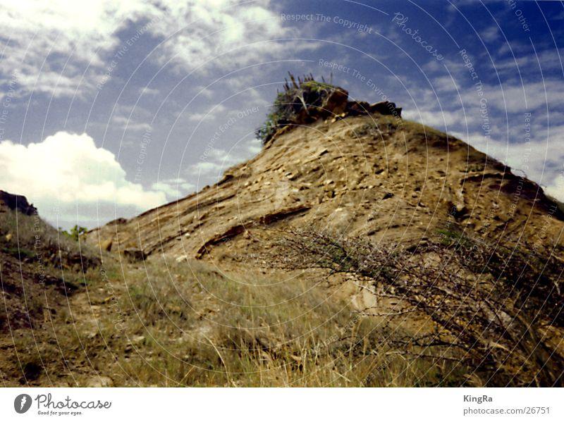 Hügel rund Sträucher Kaktus Gras Sand Berge u. Gebirge Himmel Erde Kakteenen