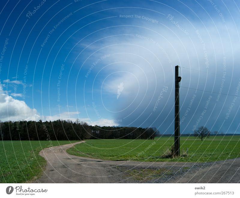 Wegmarke Energiewirtschaft Strommast Elektrizität Umwelt Natur Landschaft Pflanze Himmel Wolken Gewitterwolken Horizont Frühling Klima Wetter Schönes Wetter