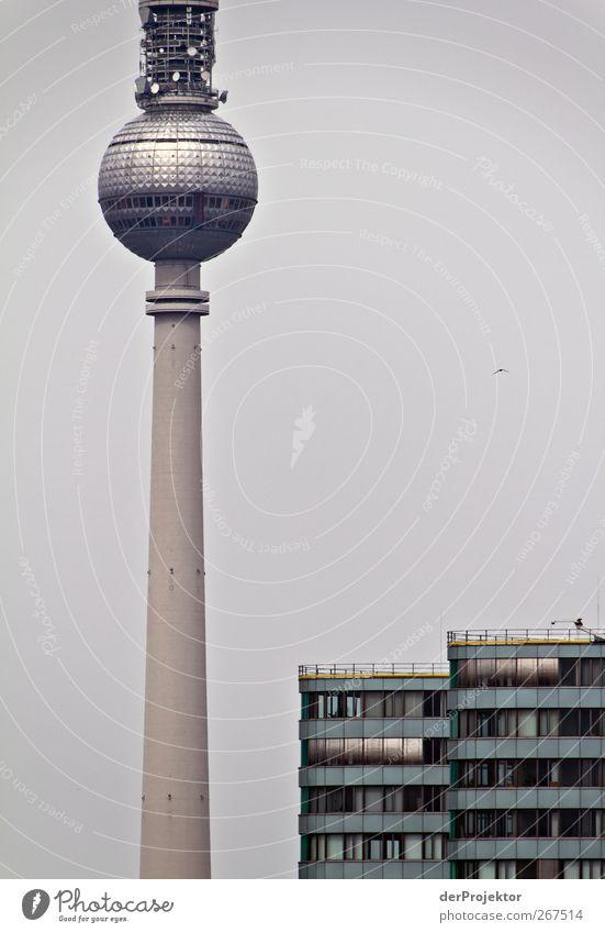 Warum steht ihr eigentlich so auf Berlinbilder mit dem Alex? dunkel Fassade Hochhaus authentisch Turm Telekommunikation Technik & Technologie dünn Skyline