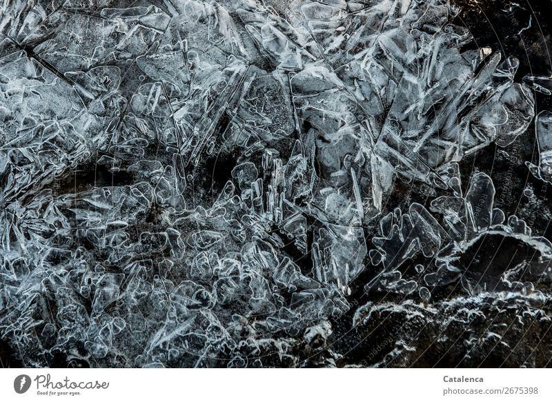 *800* Spitzen und Zacken Winter Eis Frost Strukturen & Formen Eiskristall kalt Stimmung Design Natur Umwelt gefroren Farbfoto Gedeckte Farben Außenaufnahme