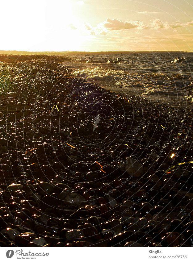 Schatz des Nordens Kieselsteine Strand Wellen Sonnenuntergang Gegenlicht Einsamkeit Wolken Brandung Stein Sand Abend Ostsee Wasser Seetank