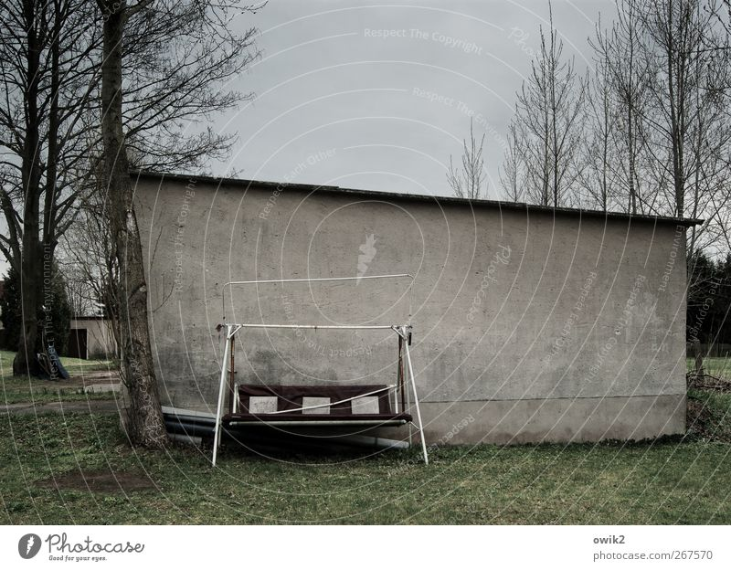 Resterampe Himmel Natur alt Baum Pflanze Wolken dunkel Wand Gras grau Garten Mauer Traurigkeit stehen trist verfallen