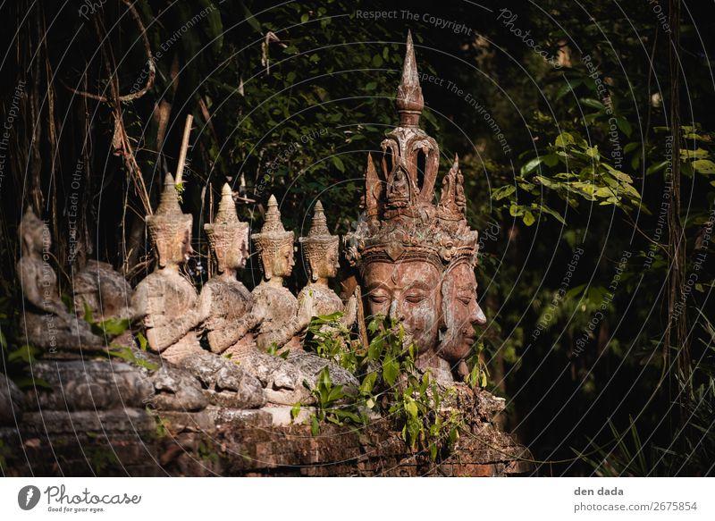 Kloster Wat Pha Lat alt Tourismus Garten ästhetisch Sehenswürdigkeit Asien Urwald Thailand Buddhismus Chiangmai Antike Stätte Buddha Statue