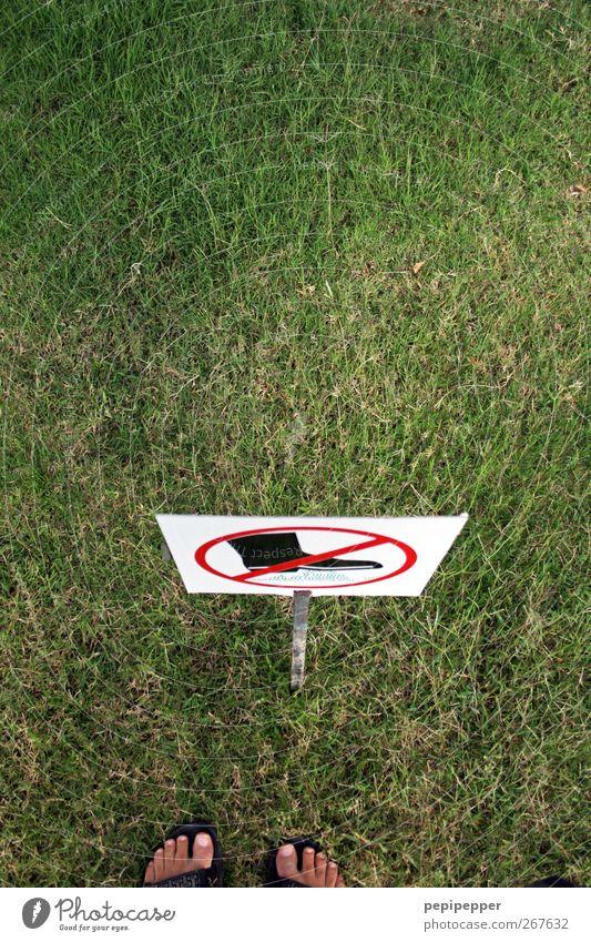 betretenes betreten Garten Mann Erwachsene Fuß 1 Mensch Gras Park Wiese Schuhe Stiefel Zeichen Schilder & Markierungen Hinweisschild Warnschild stehen grün