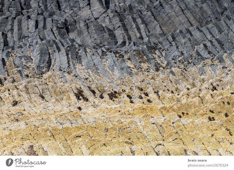 Basaltsäulen Ferien & Urlaub & Reisen Insel Umwelt Natur Landschaft Urelemente Erde Felsen Stein natürlich gelb grau Willensstärke Macht Design Großbritannien