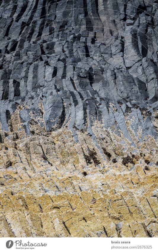 Basaltsäulen Ferien & Urlaub & Reisen Insel Dekoration & Verzierung Kunst Kunstwerk Umwelt Natur Landschaft Erde Stein natürlich gelb grau Willensstärke Macht