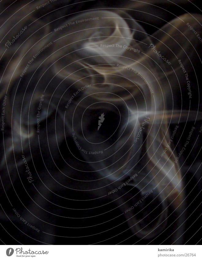 Rose im Nebel Rauch Zigarette Schwung Stil Makroaufnahme Nahaufnahme Dynamik