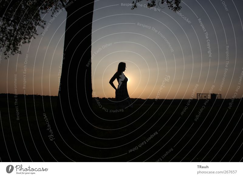 Kontraste beim Sonnenuntergang Mensch Natur Jugendliche blau Baum schwarz ruhig Erwachsene Erholung Umwelt Landschaft feminin Erotik Wärme Gefühle Frühling