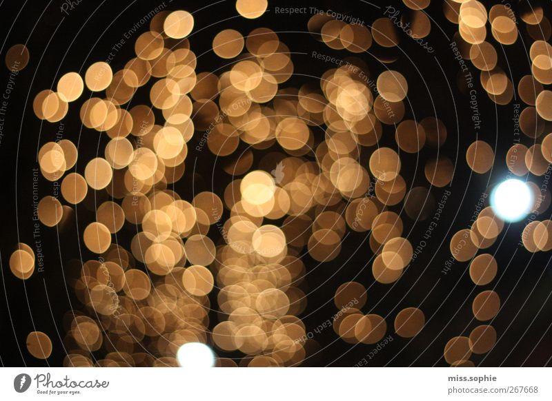 goldregen. schwarz gelb Horizont glänzend Stern leuchten rund Kreativität Punkt Inspiration Lichtspiel