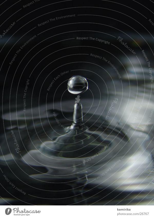 tropfen Wasser dunkel Glas Wassertropfen nass rund Kugel Baumkrone spritzen Korona