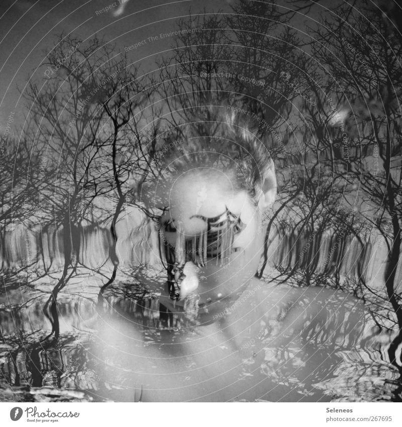 dreaming Mensch Frau Himmel Natur Wasser Baum Pflanze ruhig Erwachsene Gesicht Auge Umwelt Landschaft feminin Küste Kopf