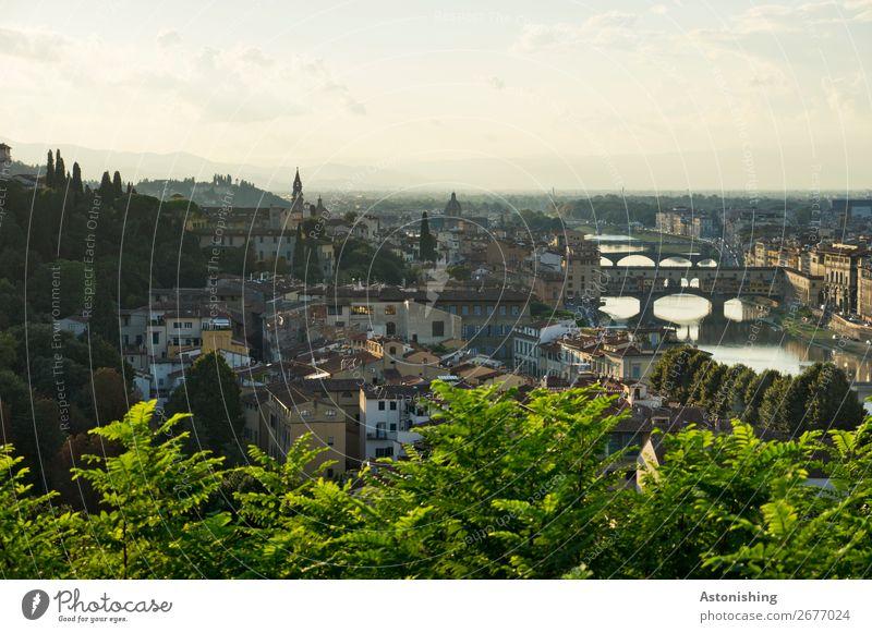die Brücken von Florenz Umwelt Natur Landschaft Himmel Wolken Horizont Sonnenaufgang Sonnenuntergang Sommer Wetter Schönes Wetter Pflanze Baum Blatt Hügel Fluss