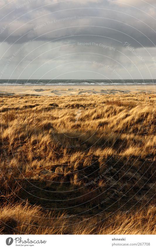 Nordsee Landschaft Urelemente Erde Luft Wasser Wolken Gewitterwolken Klima Wetter Schönes Wetter schlechtes Wetter Regen Wellen Küste Strand Insel Borkum
