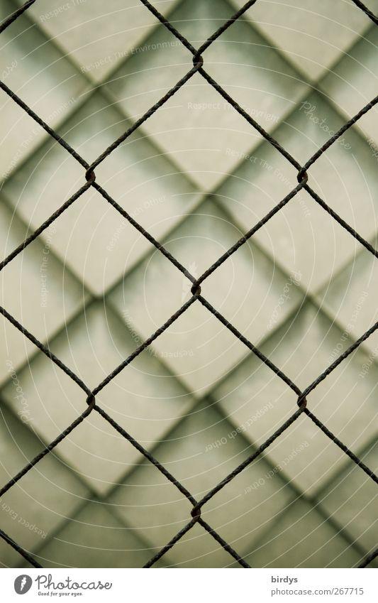 Formverwandtschaft 1 Mauer Wand Wandverkleidung ästhetisch außergewöhnlich Sicherheit Schutz Ordnung Symmetrie Stadt Maschendrahtzaun Verbindung Rautenmuster