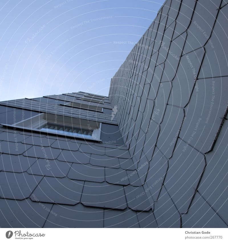 Hoch Menschenleer Haus Bauwerk Gebäude Architektur Mauer Wand Fassade Fenster blau Schiefer Fluchtpunkt diagonal Gardine Himmel himmelblau himmelwärts grau
