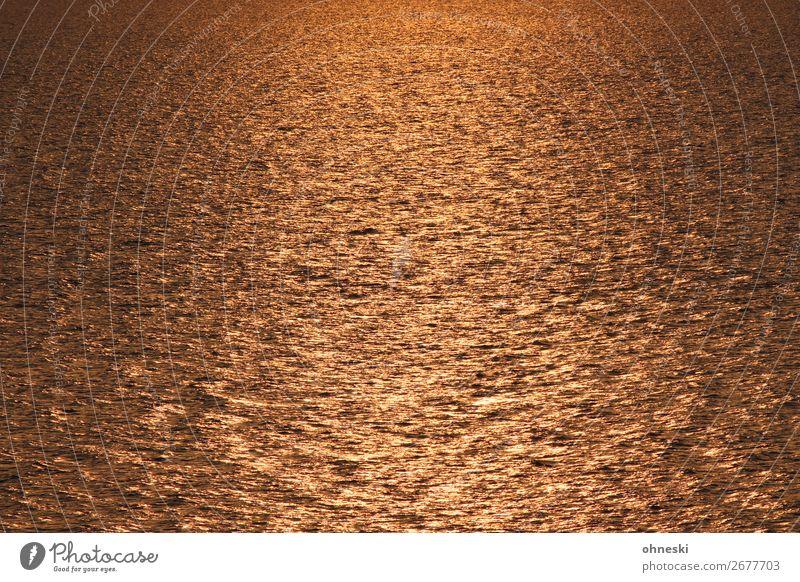 Meer im Sonnenuntergang Urelemente Wasser Sommer Schönes Wetter Wellen Optimismus Kraft geduldig ruhig Hoffnung Glaube demütig träumen Sehnsucht Fernweh