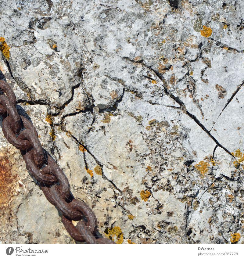 Felsen Umwelt Natur Moos Berge u. Gebirge Stein Metall Linie dehydrieren dreckig trist trocken grau Endzeitstimmung Gelassenheit Rettung stagnierend
