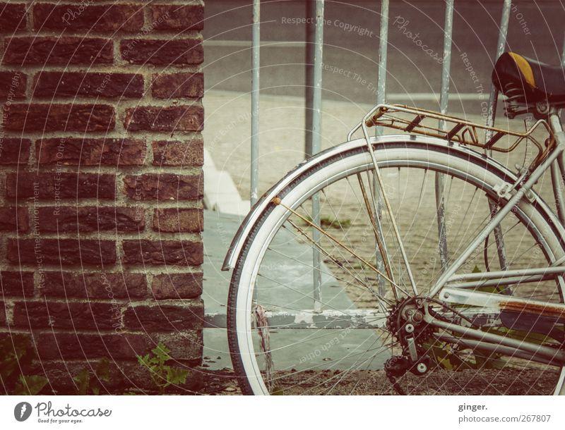 Alte Fieze Fahrradfahren alt Rost Backstein Gitter Neigung krumm parken Mauer Gepäckträger Schutzblech Speichen rotbraun Metallwaren Farbfoto Gedeckte Farben