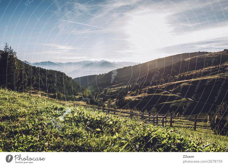 Meran 2000 Freizeit & Hobby Ferien & Urlaub & Reisen Berge u. Gebirge wandern Natur Landschaft Sonne Sommer Schönes Wetter Alpen Gipfel Bergwiese natürlich