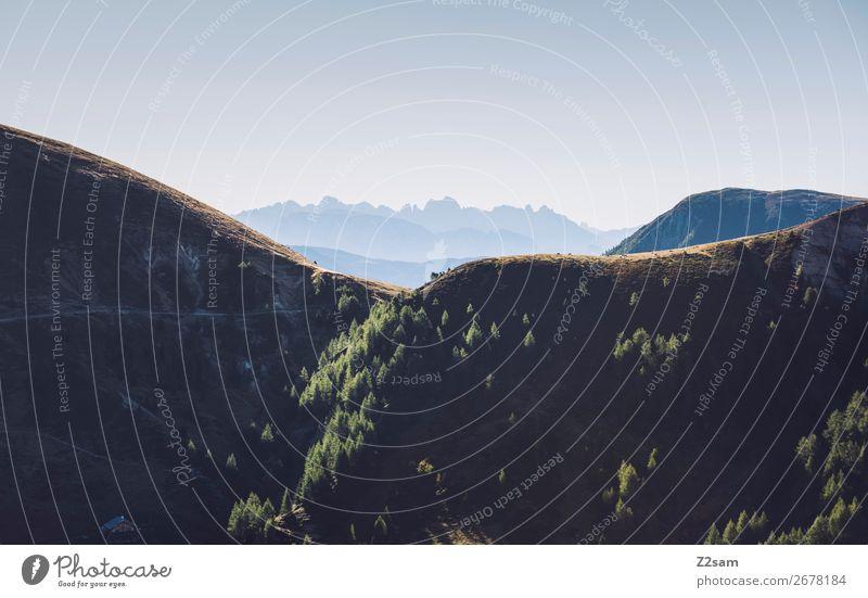 Hirzer - Meran Berge u. Gebirge wandern Umwelt Natur Landschaft Sommer Schönes Wetter Wald Alpen Gipfel gigantisch natürlich blau grün Erholung Farbe Idylle