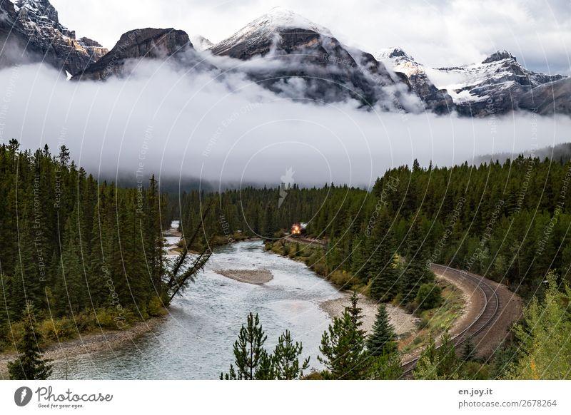 Fernweh | da kommt er Ferien & Urlaub & Reisen Ausflug Umwelt Natur Landschaft Nebel Wald Berge u. Gebirge Rocky Mountains Fluss Schienenverkehr Eisenbahn