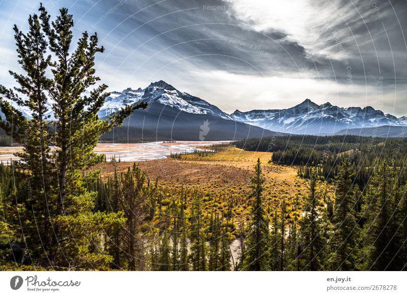 Landschaft Ferien & Urlaub & Reisen Ausflug Abenteuer Ferne Freiheit Expedition Berge u. Gebirge Natur Pflanze Himmel Sonne Sonnenlicht Herbst Wald