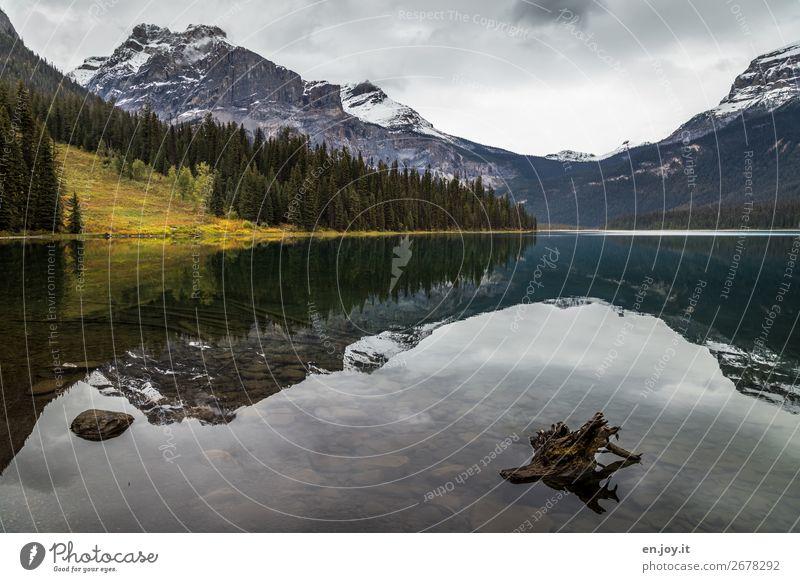 Windstill Ferien & Urlaub & Reisen Ausflug Natur Landschaft Wolken Herbst Wald Hügel Felsen Berge u. Gebirge Rocky Mountains Seeufer Emerald Lake ruhig