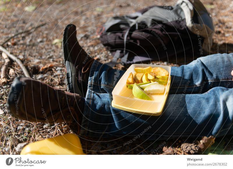 Pause Lebensmittel Frucht Apfel Picknick Bioprodukte Slowfood Wald sitzen frisch Gesundheit Jause Apfelschnitz Proviant Farbfoto Außenaufnahme
