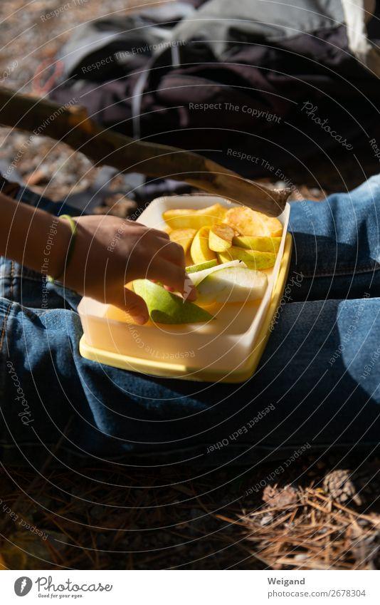 Pause Lebensmittel Frucht Apfel Ernährung Essen Picknick Bioprodukte Vegetarische Ernährung Slowfood berühren Erholung Zusammenhalt Farbfoto Außenaufnahme