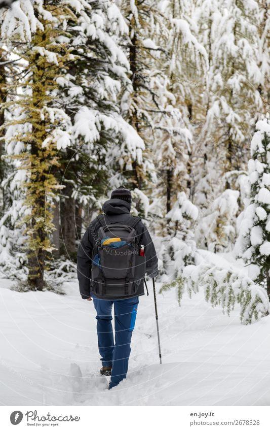 Septemberschnee Mensch Ferien & Urlaub & Reisen Natur Mann Pflanze Landschaft Erholung Wald Winter Berge u. Gebirge Erwachsene kalt Schnee Tourismus Ausflug